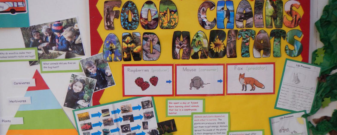 year 2 science topic 2